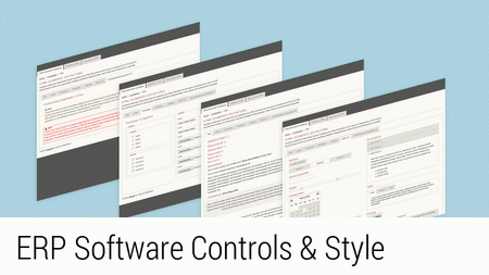 ERP Software Controls & Style